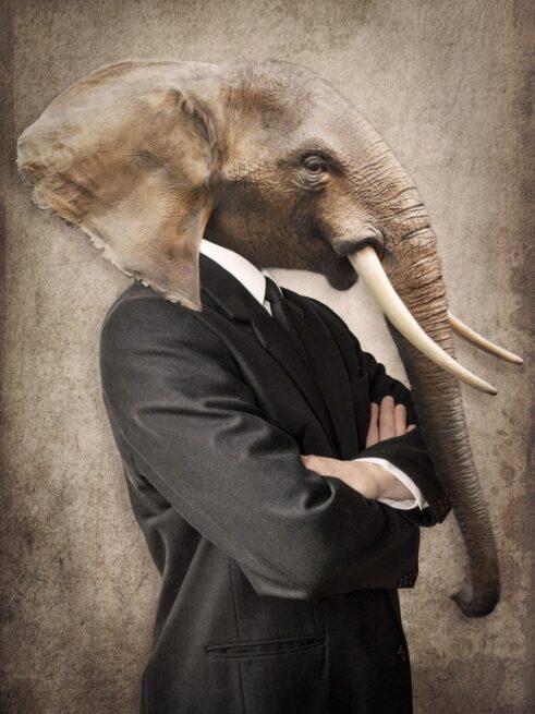 Elefant i jakkesæt - Plakat