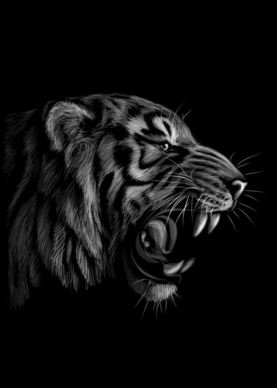 Tiger - Plakat