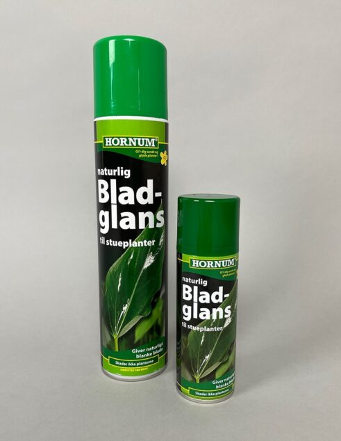 Bladglans