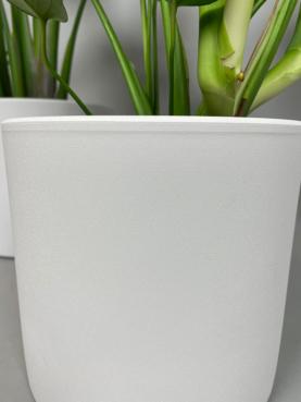Hvid Skjuler